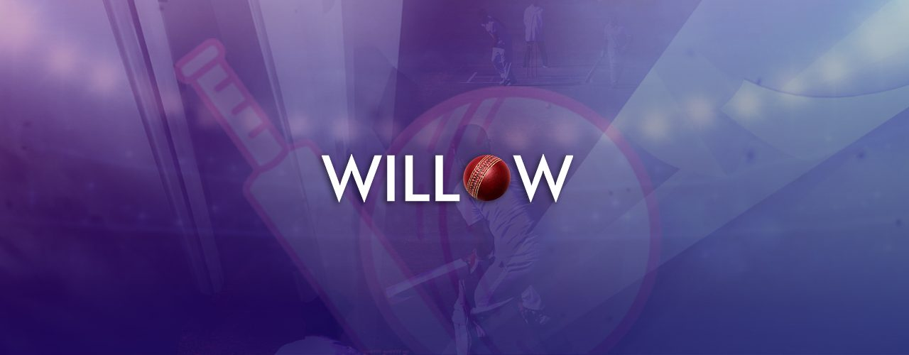 How to Add and Stream Willow on Roku